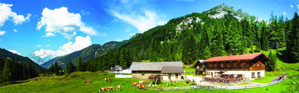 Ein Panoramabild der Vögeialm in Forstau